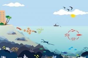 Pengertian Ekosistem Ekosistem Adalah Ekosistem Laut Komponen