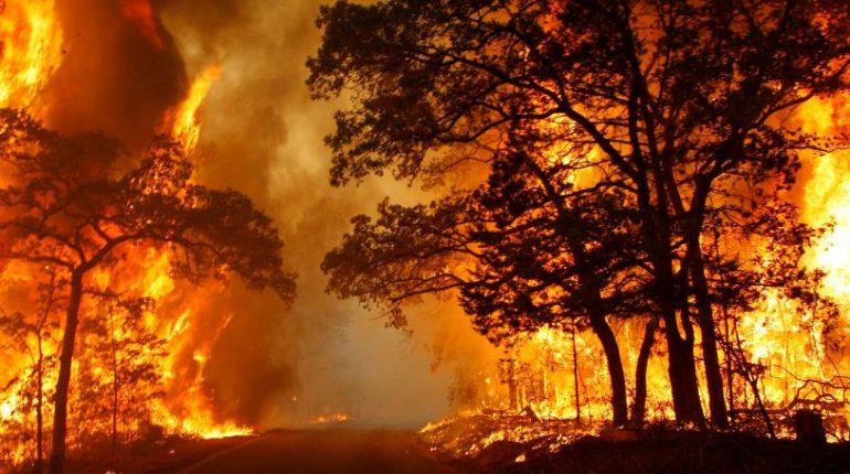 3 Contoh Berita Bencana Alam Dalam Bahasa Inggris Kakak Pintar